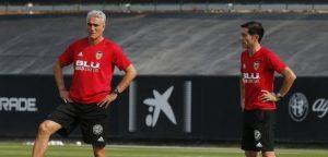 Lee más sobre el artículo La importancia de los roles del primer y segundo entrenador