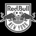 redbull new york
